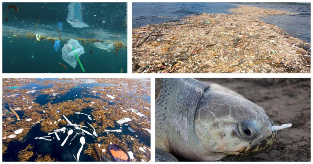 The laying of plastics and their impact on the environment