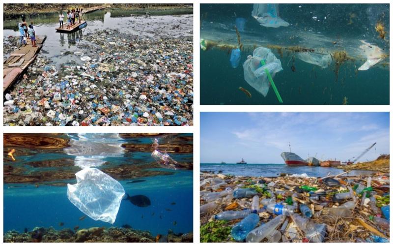 Plástico: El veneno del planeta
